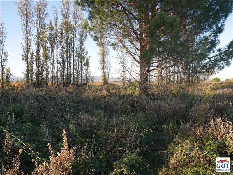 Revenda terreno St hippolyte 9500€ - Fotografia 2
