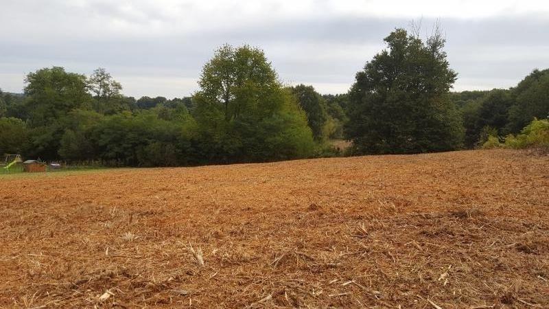 Vente terrain St just le martel 65000€ - Photo 1