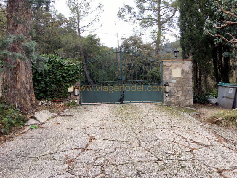 Vendita nell' vitalizio di vita casa Méounes-lès-montrieux 130000€ - Fotografia 19