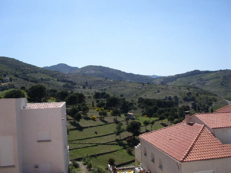 Vente maison / villa Port vendres 445000€ - Photo 4