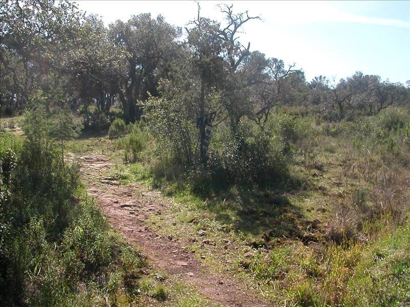 Vente terrain Le cannet des maures 141000€ - Photo 1