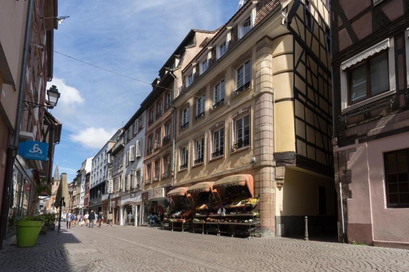 Location appartement Strasbourg 820€ CC - Photo 1
