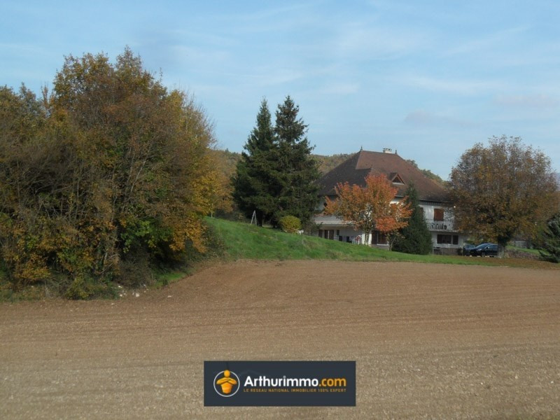 Sale house / villa Morestel 375000€ - Picture 1