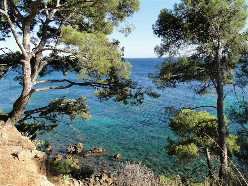 Location vacances appartement Bandol 580€ - Photo 1