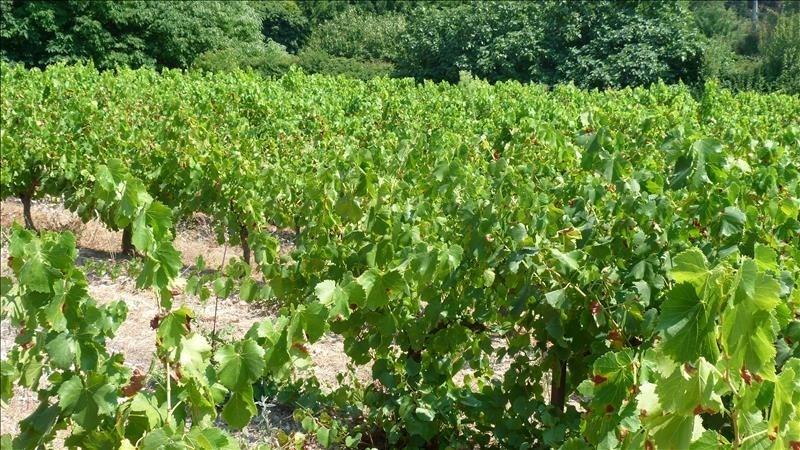 Verkoop  stukken grond Crillon le brave 199000€ - Foto 2