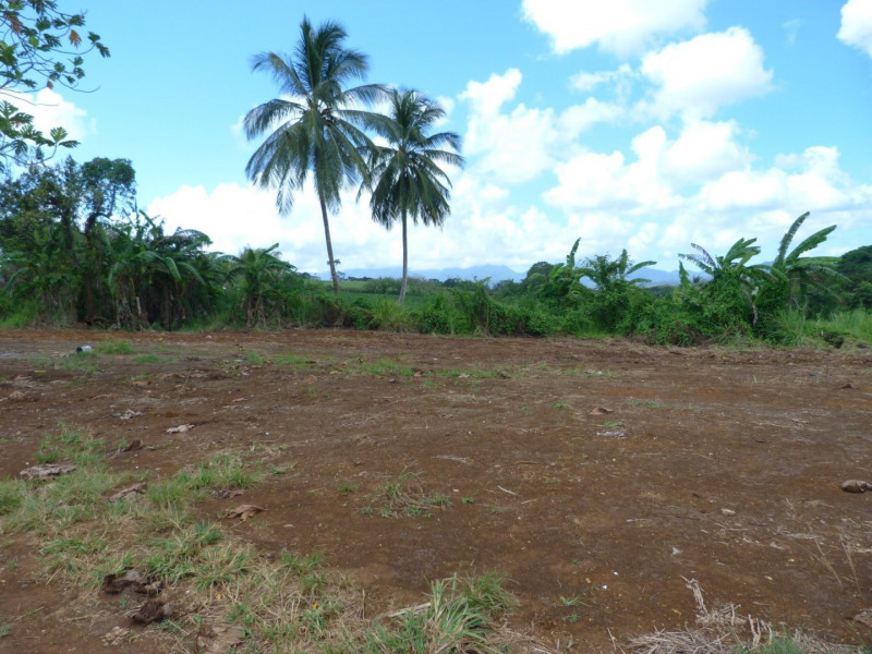 Vente terrain Lamentin 109000€ - Photo 4