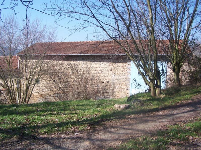 Vente maison / villa Villecheneve 45000€ - Photo 1
