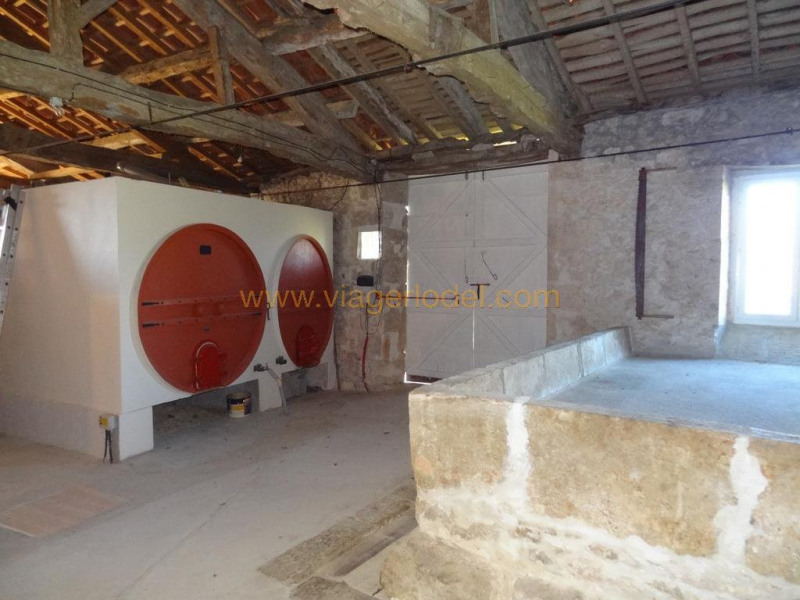 Viager maison / villa Larroque-saint-sernin 112 000€ - Photo 11