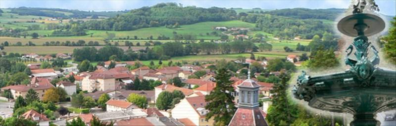 Vente maison / villa St jean de bournay 96500€ - Photo 3
