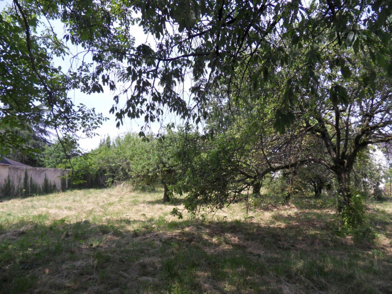 Vente terrain Montigny-sur-loing 137800€ - Photo 3