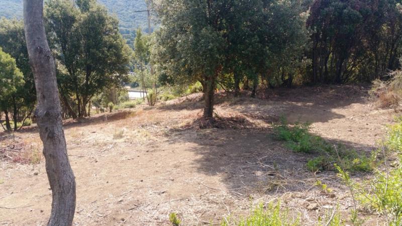 Vente terrain Eccica-suarella 135000€ - Photo 5
