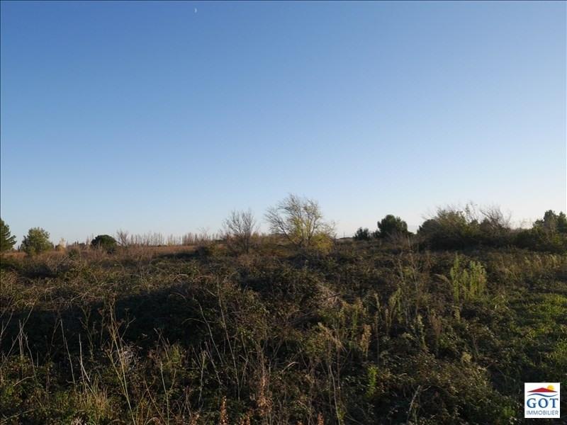 Revenda terreno St hippolyte 13500€ - Fotografia 3