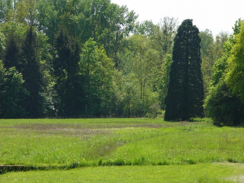 Vente de prestige maison / villa Fontainebleau 1300000€ - Photo 5