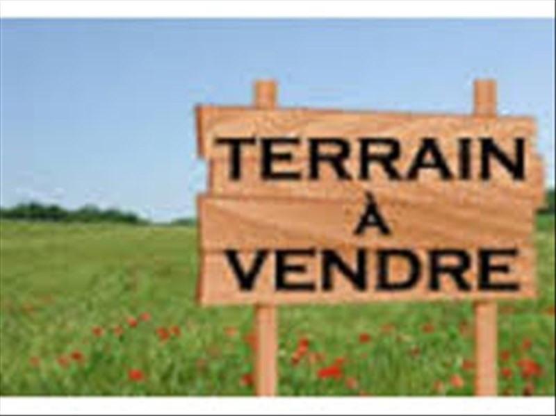 Sale site La salvetat belmontet 51000€ - Picture 1