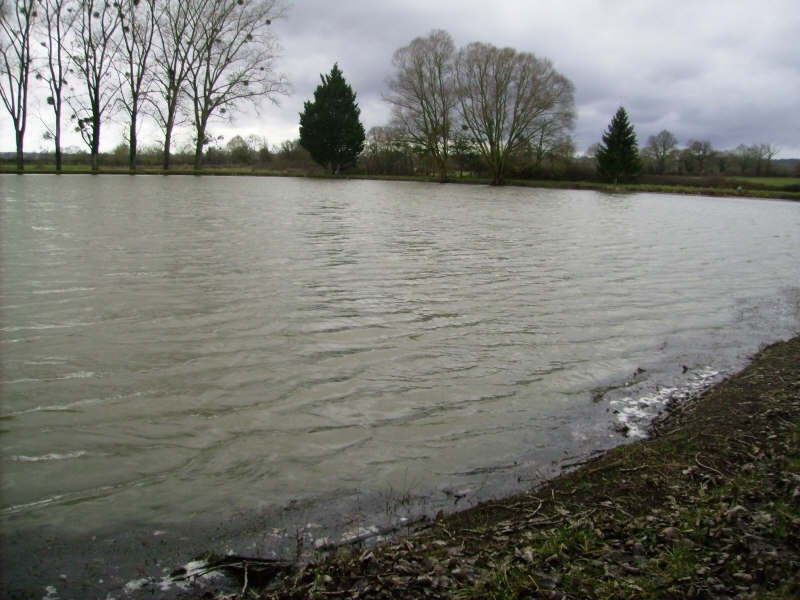 Sale site Magny cours 110000€ - Picture 4
