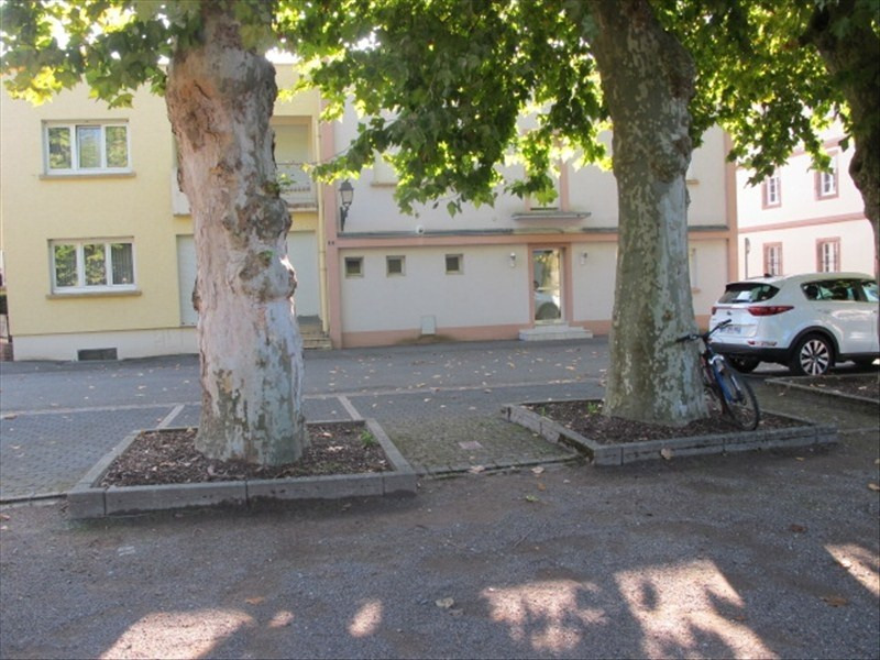 Rental office Lauterbourg 47€ HT/HC - Picture 1
