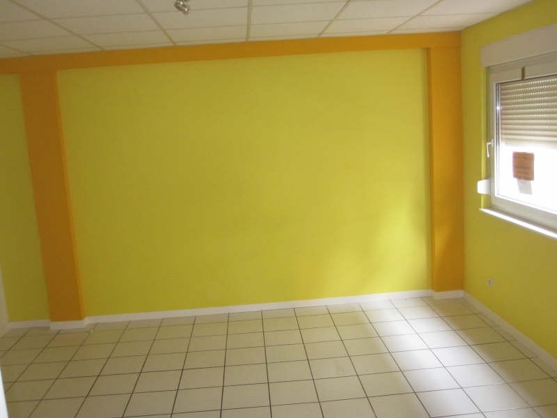 Rental office Lauterbourg 47€ HT/HC - Picture 5
