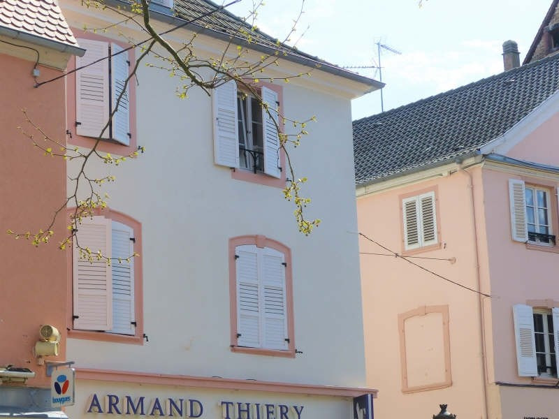 Vente immeuble Haguenau 599 000€ - Photo 1