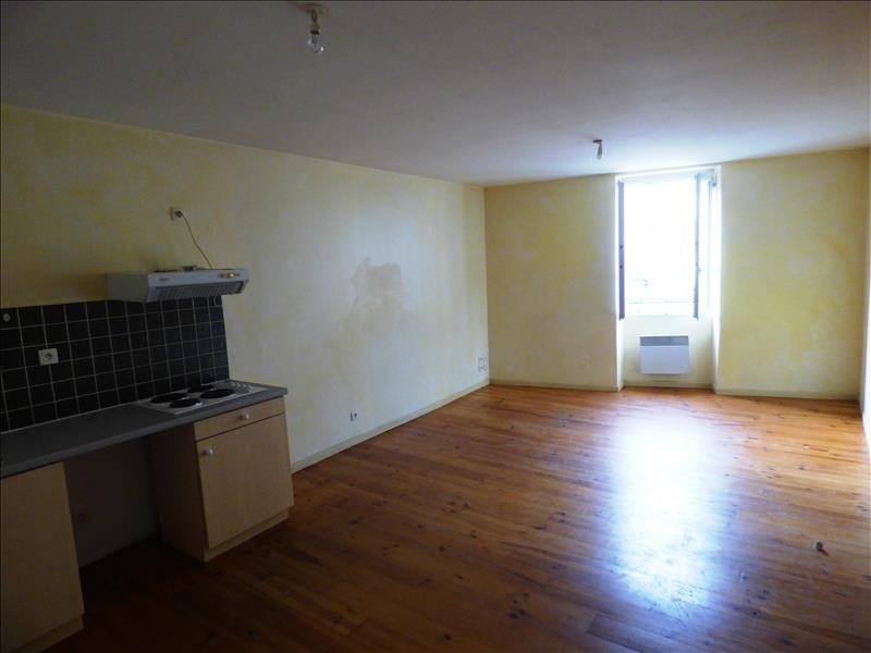 Location appartement Mazamet 290€ CC - Photo 1