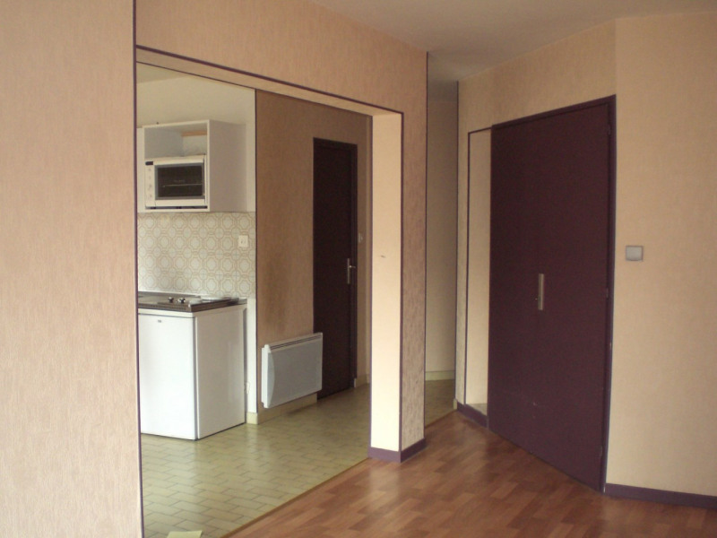 Location appartement Grenoble 515€ CC - Photo 3
