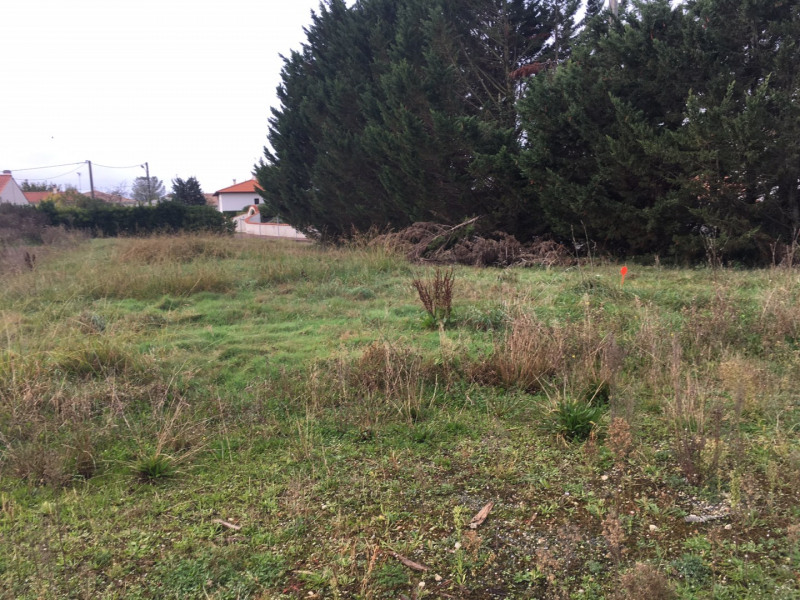 Vente terrain Semussac 43 760€ - Photo 1