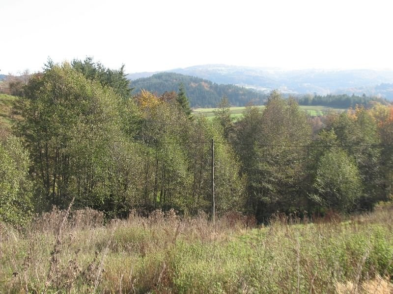 Vente terrain Salettes 43 500€ - Photo 1