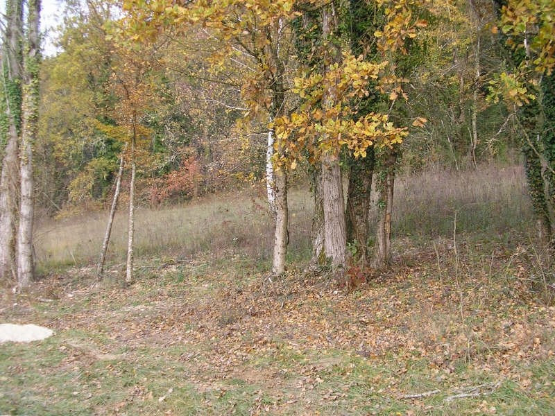 Vente terrain Bregnier - cordon 50 000€ - Photo 1