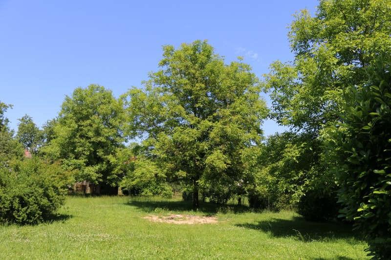 Vente maison / villa St pardoux la riviere 106900€ - Photo 3
