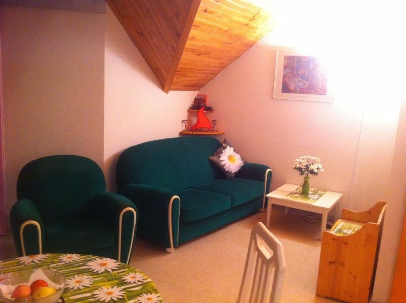 Vente appartement La lechere 84000€ - Photo 3