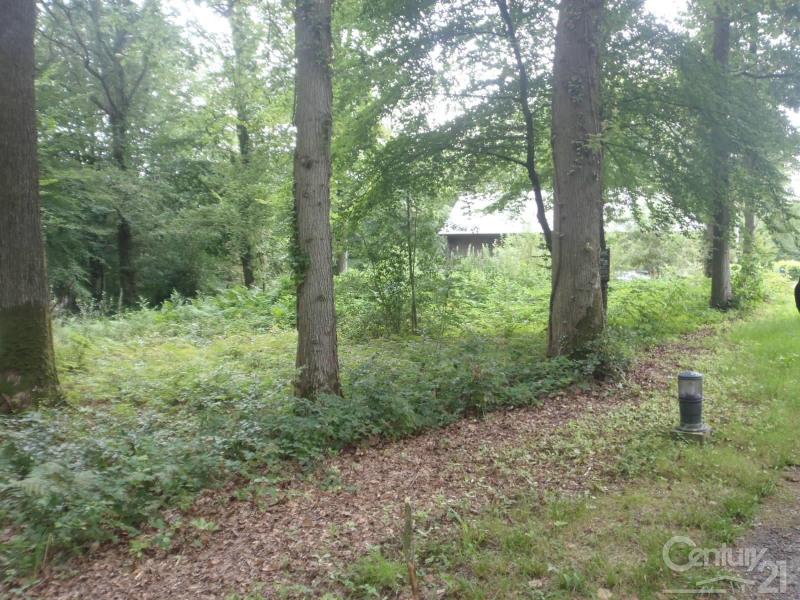 Vendita terreno St gatien des bois 149000€ - Fotografia 4