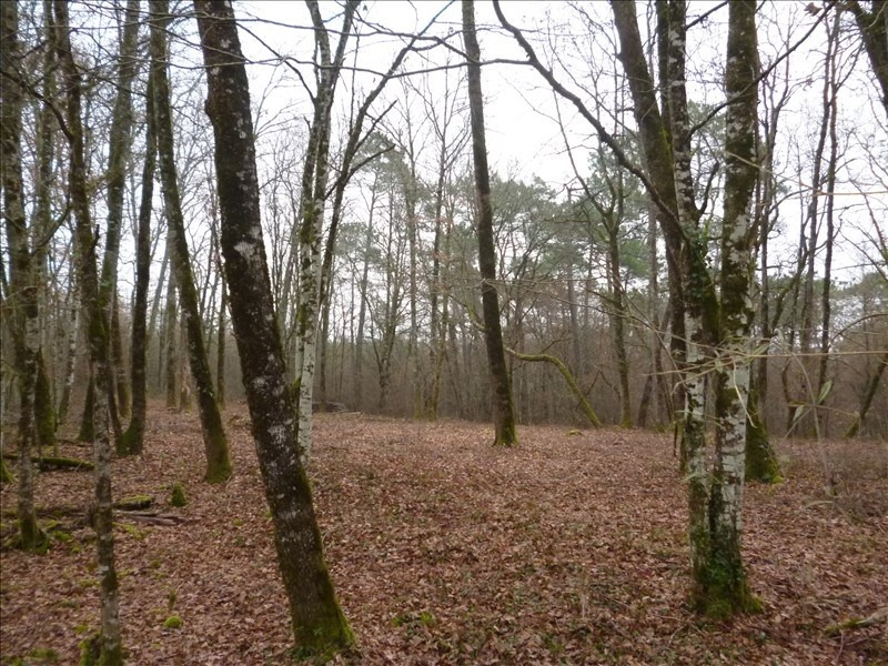 Vente terrain Perigueux 63 000€ - Photo 1