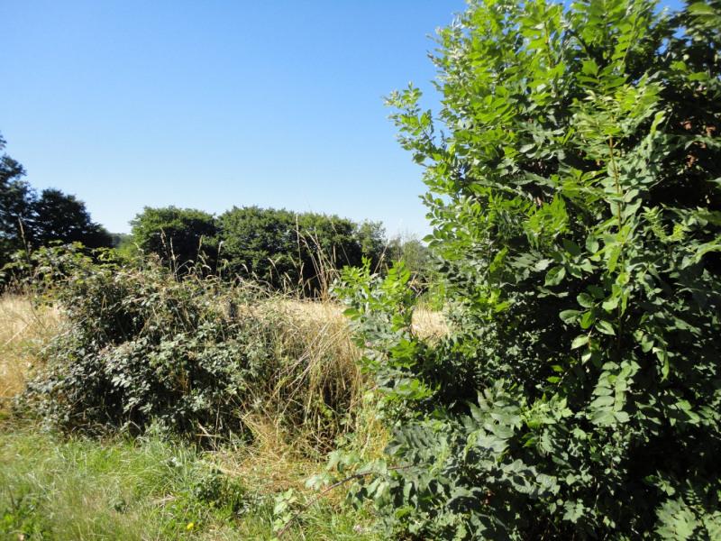 Vente terrain Vicq-sur-breuilh 17800€ - Photo 4