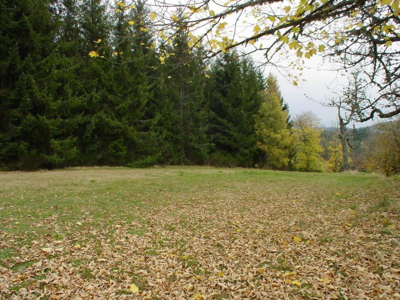 Vente terrain Le chambon sur lignon 27920€ - Photo 1
