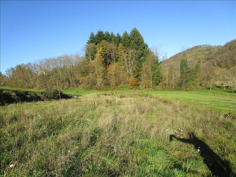 Venta  terreno Chasselay 77000€ - Fotografía 1