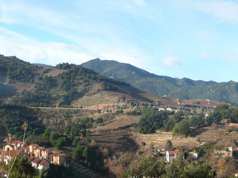 Sale site Collioure 199 000€ - Picture 7