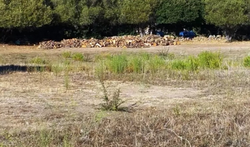 Vente terrain Serra-di-ferro 290000€ - Photo 3