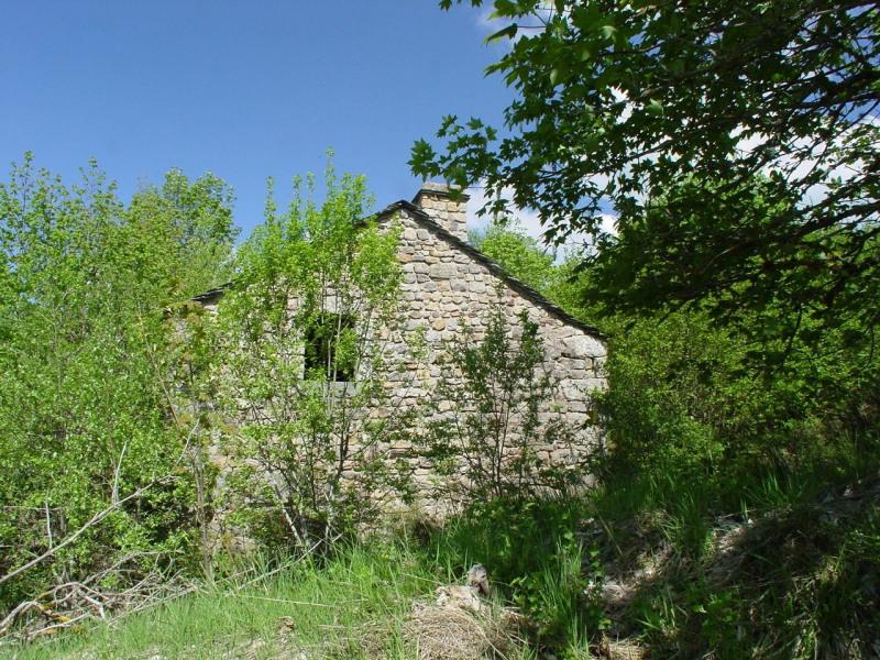 Sale house / villa Devesset 61800€ - Picture 2