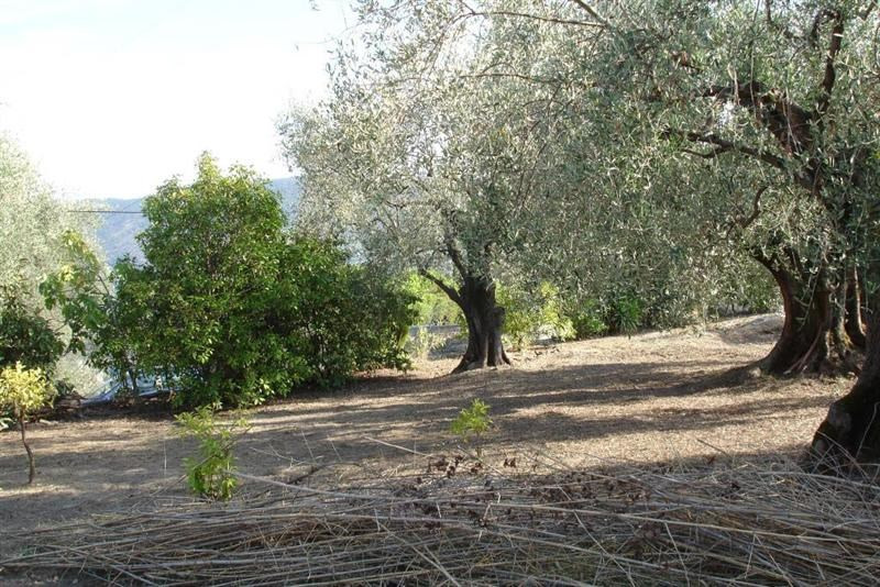 Vendita terreno L'abadie 318000€ - Fotografia 10