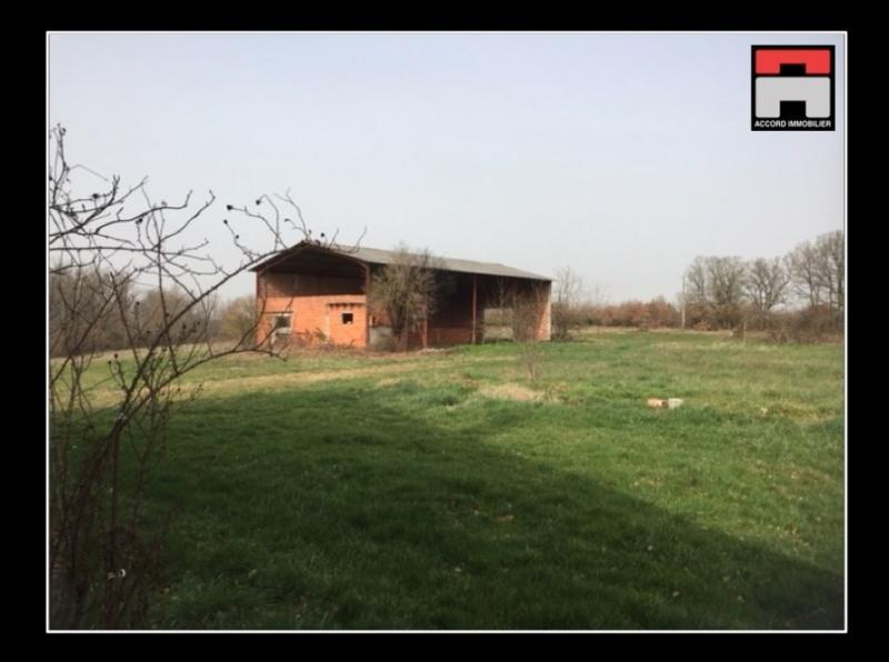 Vente maison / villa Lisle sur tarn 182000€ - Photo 2