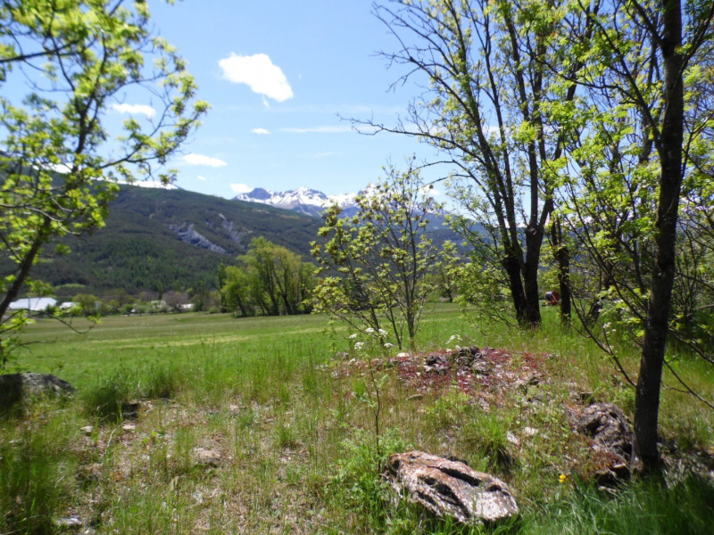 Vente terrain Faucon-de-barcelonnette 55000€ - Photo 1