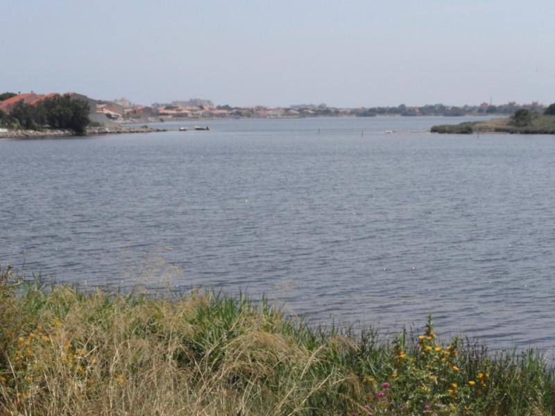 Location vacances maison / villa Port leucate 305,78€ - Photo 10