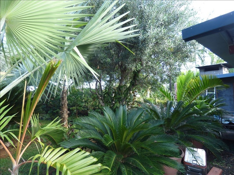 Vente maison / villa La riviere 296 800€ - Photo 1