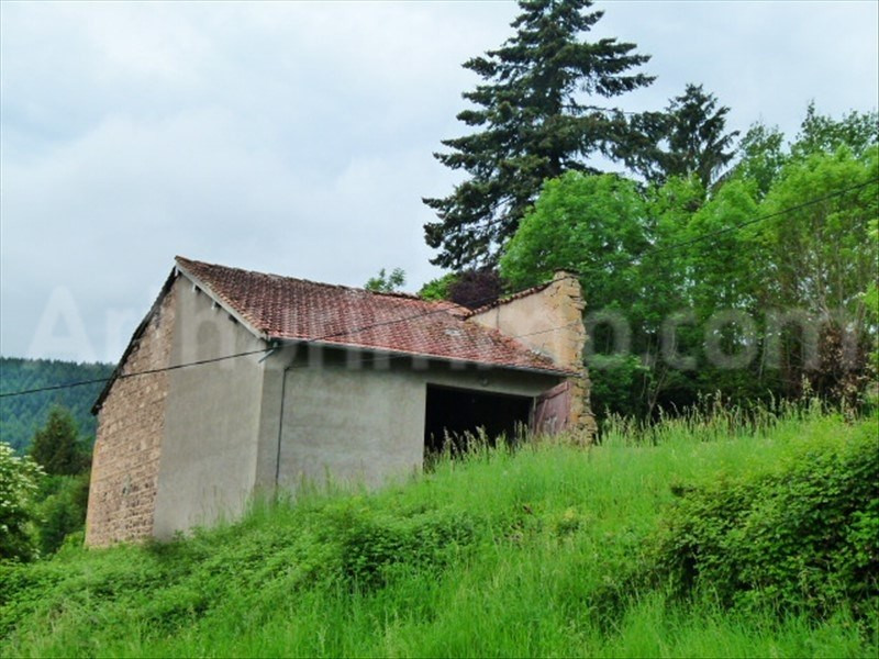 Vente maison / villa Dareize 89000€ - Photo 2
