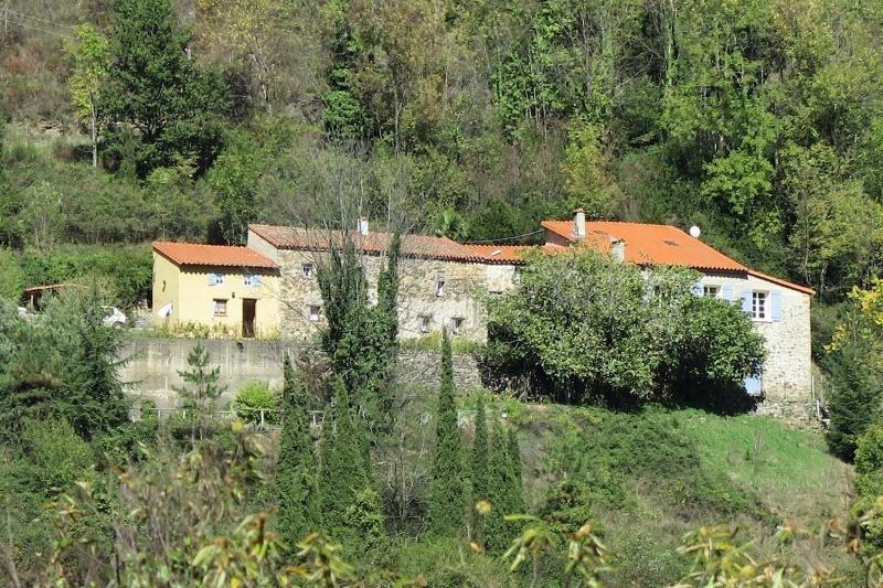 Vente maison / villa Prats de mollo la preste 548000€ - Photo 1