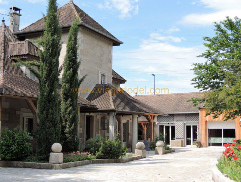 Vitalicio  casa Montalieu-vercieu 280000€ - Fotografía 8