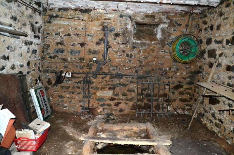 Vente maison / villa Bard le regulier 38000€ - Photo 8