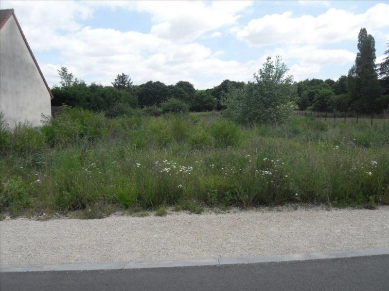 Vente terrain Maintenon 100000€ - Photo 3