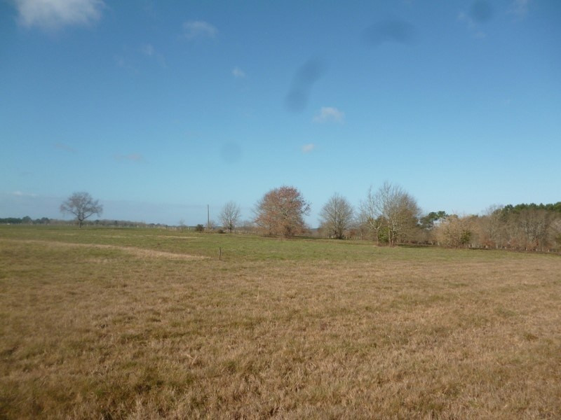 Vente terrain St remy 20 000€ - Photo 2
