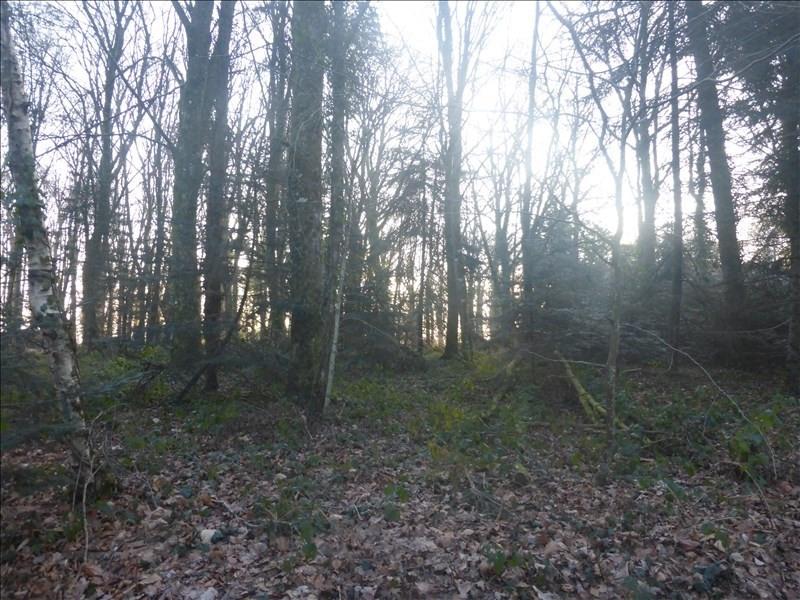 Vente terrain Savenay 38200€ - Photo 1
