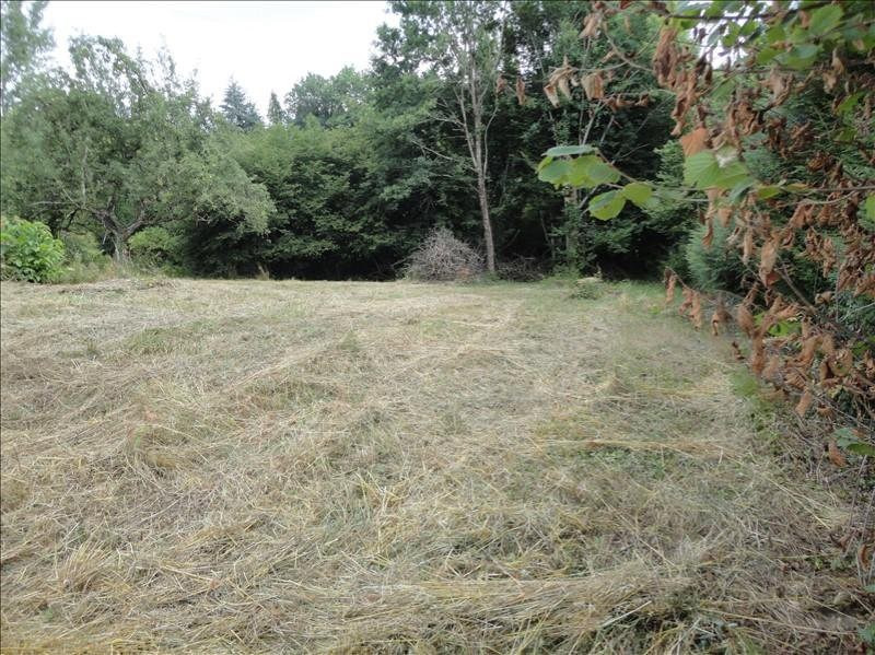 Vente terrain Saint-priest-taurion 22 500€ - Photo 1